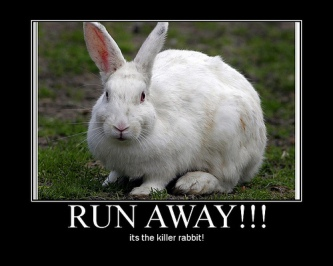 killer_rabbit_run_away