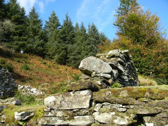 ruins, Kilmory Oib township, Knapdale Forest, Argyll