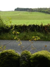 view to pasture, Clava Cairns, Inverness-shire
