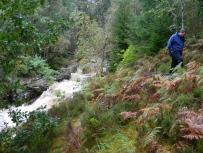 husband, Carie Burn, Black Wood of Rannoch, south of Loch Rannoch. Image C. L. Tangenberg