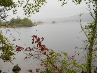 Loch Rannoch, south shore. Image C. L. Tangenberg