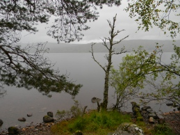 Loch Rannoch, south shore, Image C. L. Tangenberg