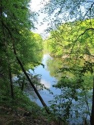 IMG_1619_light-sky-downriver-thru-foliage