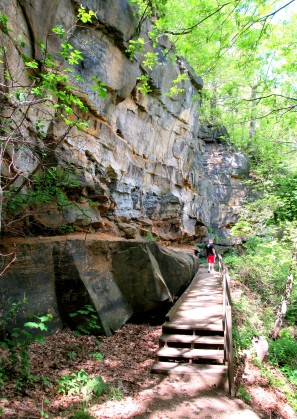 IMG_1667-boardwalk-JV-sandstone-cliff