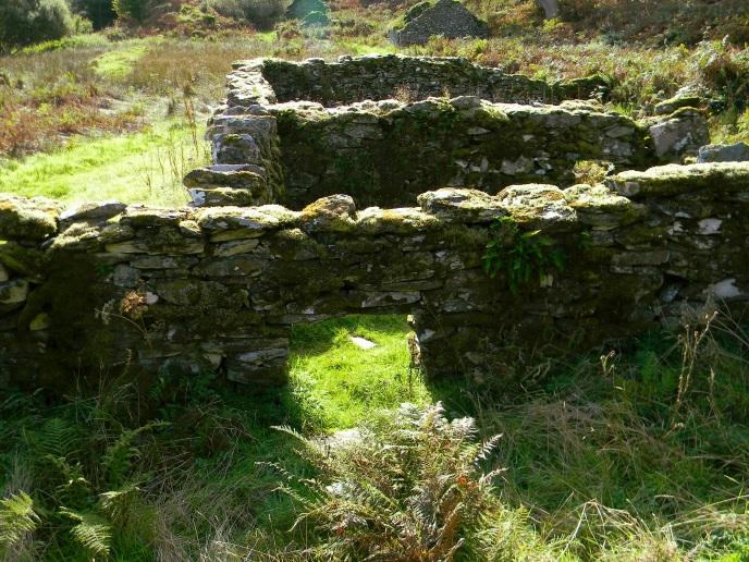 Kilmory-Oib-backlit-ruins-3-wall-chambers-fern_DSCN3308_eds-2017-12-08