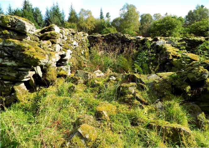 Kilmory-Oib-ruins-nested-chamber-trees-behind_DSCN3329_eds-2107-12-08