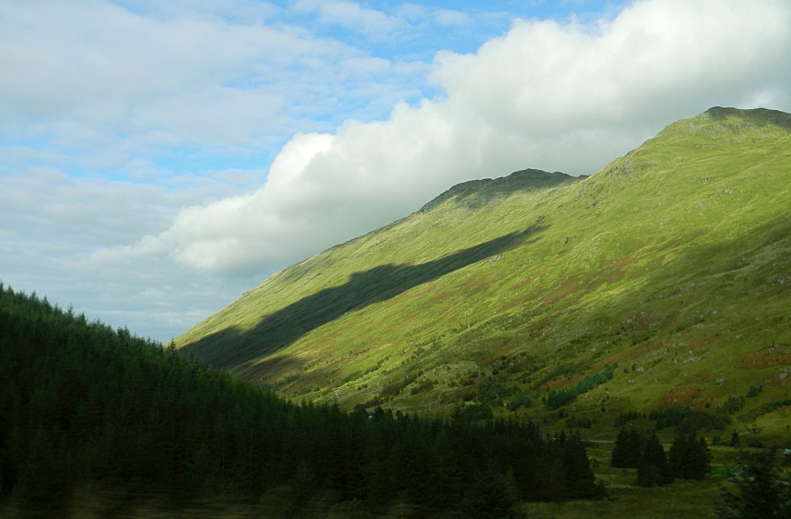 Argyll-hill-trees-glen-mtn-from-car_DSCN3205_eds-2018-07-29