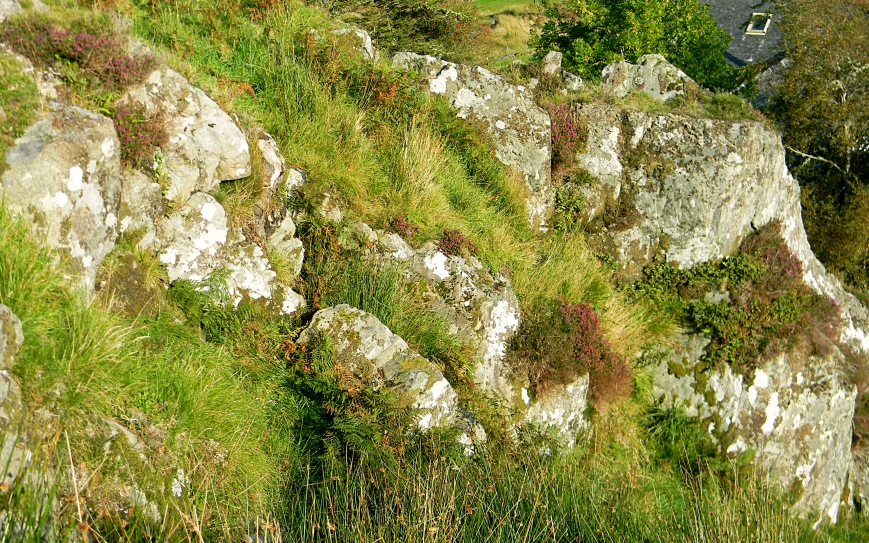 Dunadd-halfway-up-outcrop-heather-downhill-house-behind-edits-2018_DSCN3386